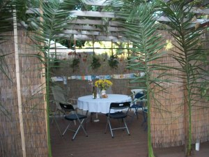 Back deck sukkah by Avraham Danan