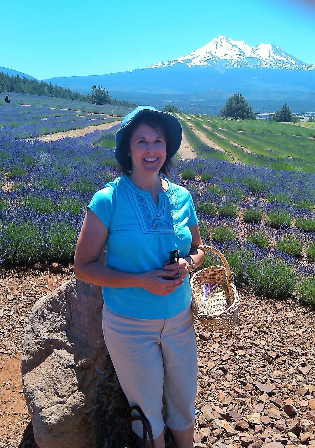 Mount Shasta Lavender Farms, California
