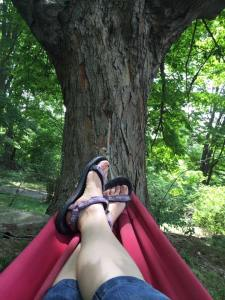 View from a Hammock in Mahopac, New York