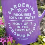 perspiration garden can 2
