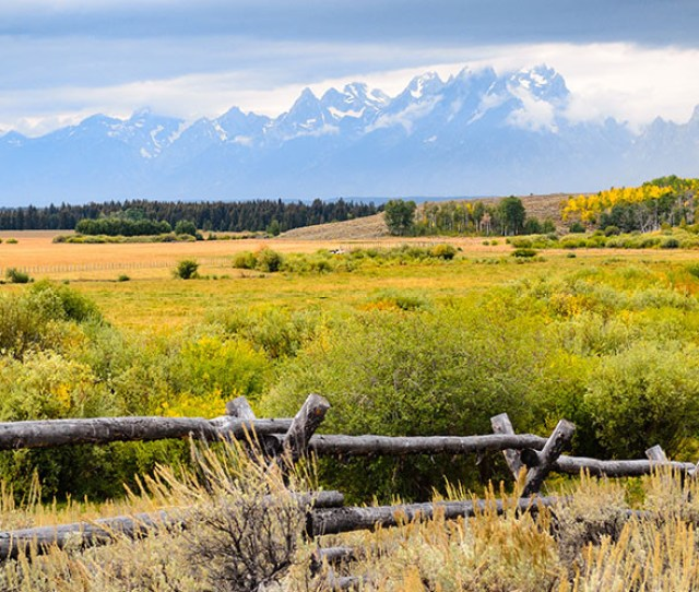 Well Traveled Kids Jackson Hole Wyoming A Family Vacation Treasure In The Summer