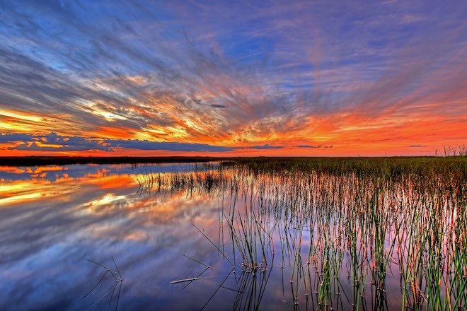 Sunset over the Florida Everglades.