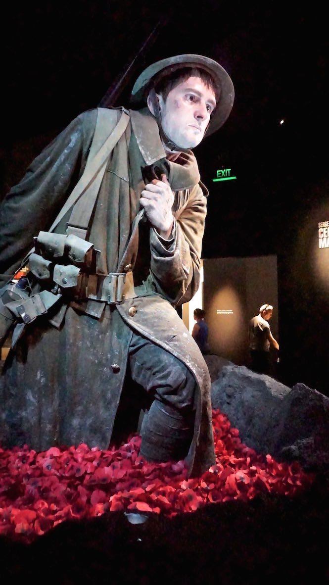 ANZAC display Te Papa Museum - Image credit Liz Bond.