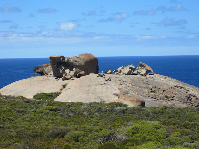 Boardwalks at Remarkable Rocks have prevented visitors from trampling the surrounding vegetation. Image credit: John Rosenthal.