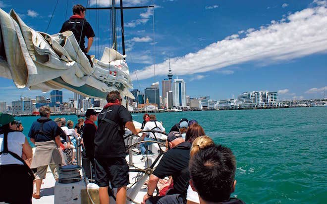 America's Cup sail on Auckland Harbour - Image Scenic