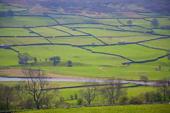 CLASSIC YORKSHIRE DALES LANDSCAPE, SWALEDALE NEAR REETH - IMAGE CREDIT ANDREW MARSHALL