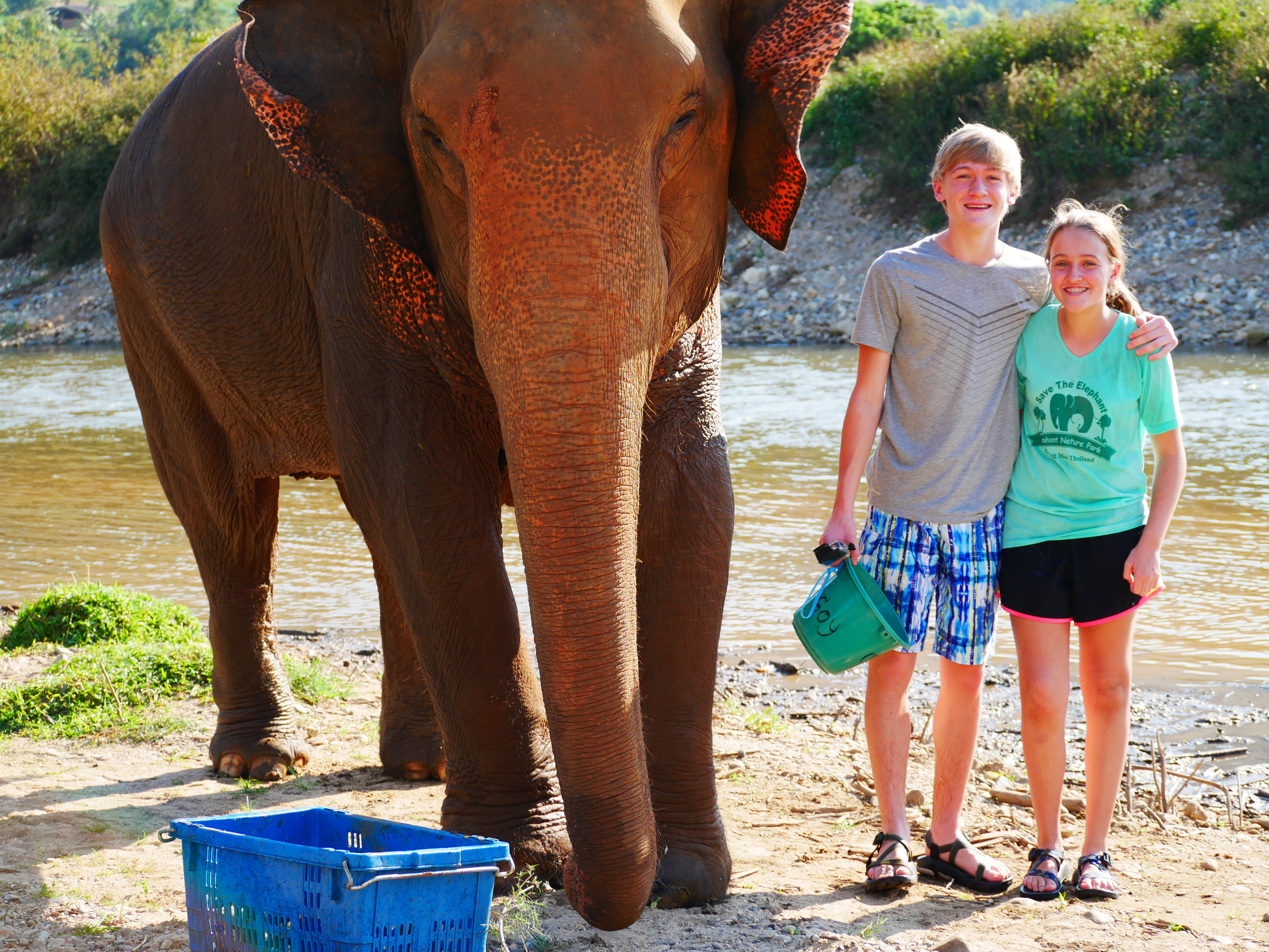 Volunteering at Elephant Nature Park Part 2