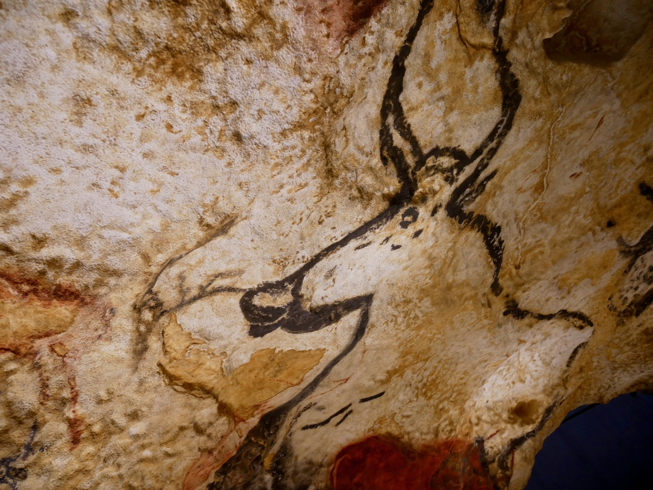 Story of the World Musts: Lascaux Cave Paintings