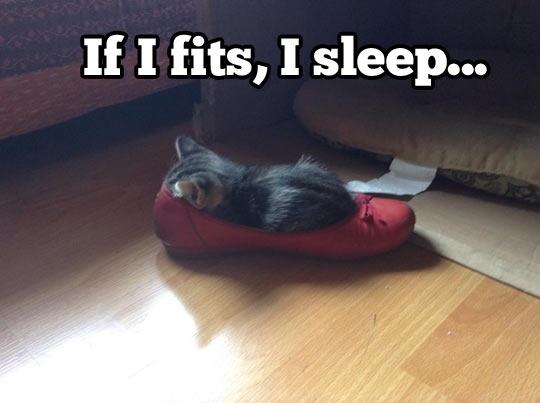 fits to sleep