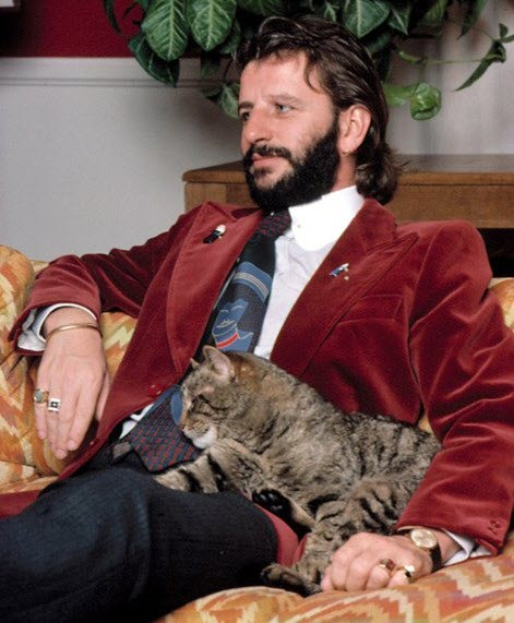 ringo starr cat lover