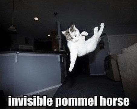 15 pommel