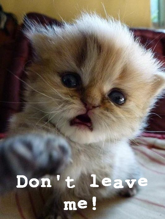 dont-leave-me