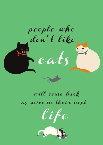 dont like cats