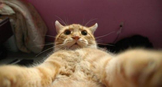 selfie 13