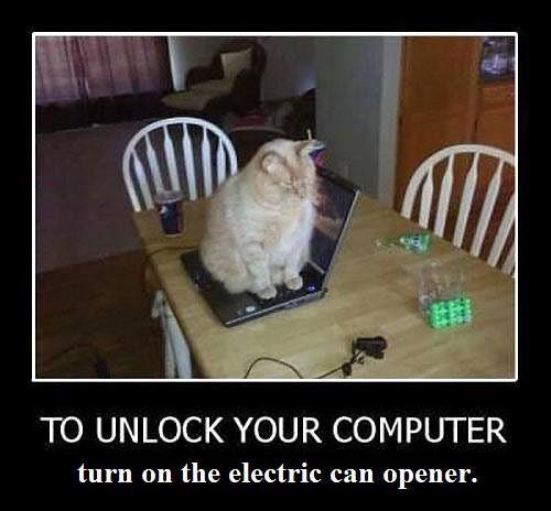 unlock lol