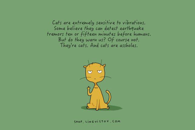 cat-doodles-012__880