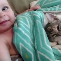 Cuteness Overload With a Baby Girl and Her Kitten Friend