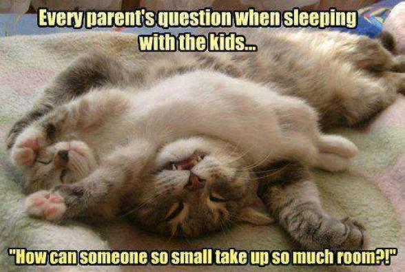 sleep with kids lol