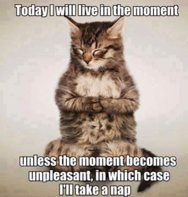 live in the moment lol