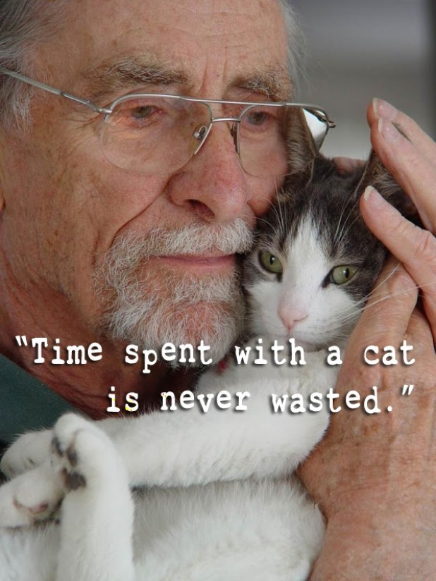 time spent quote 1