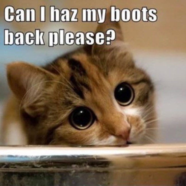 boots-back
