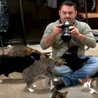 """This """"My Cat From Hell"""" Cameraman Couldn't Leave Without Adopting A Kitty Of His Own"""