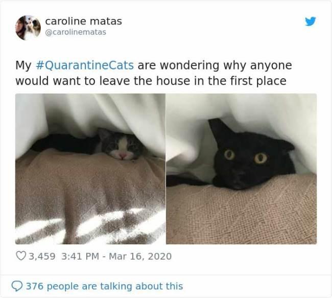 quarantine-1