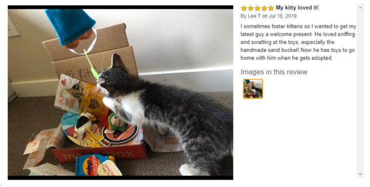 meowbox customer review