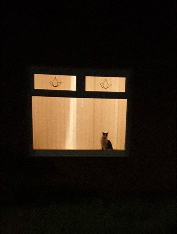 myhouse-14