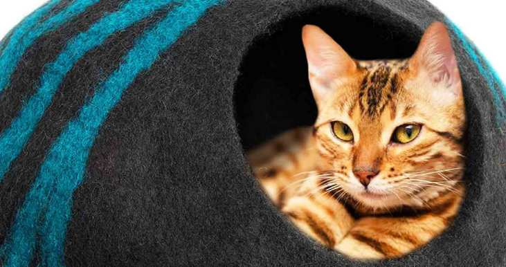meowfia-cat-cave-bed