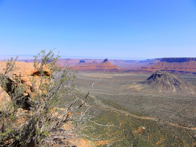 The view from Porcupine Rim trail in Moab