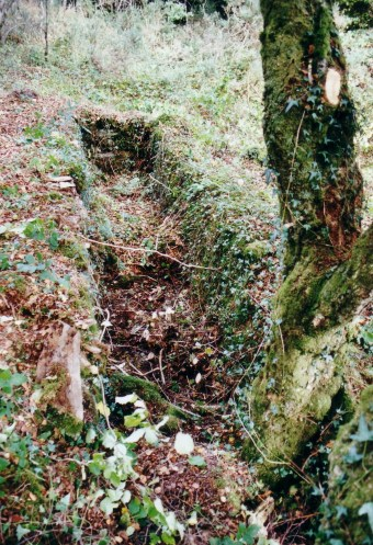 The remains of a small wheel-pit were found