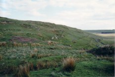 Looking south, the course of Taylor's Leat to Cwmerfin can be seen going into the distance