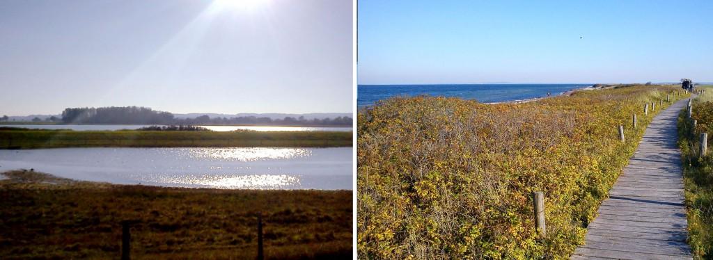 Naturschutzgebiet Kleiner Binnensee