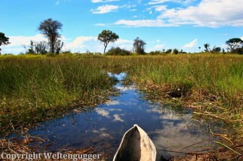Best of Botswana-24