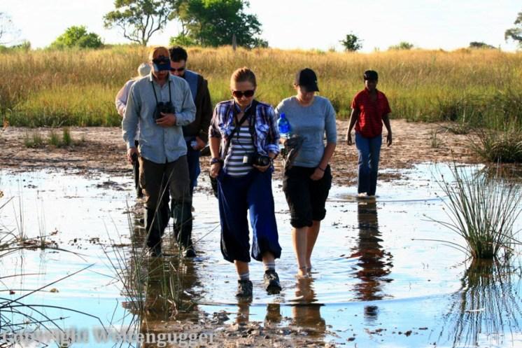 Best of Botswana-31