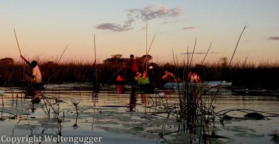 Best of Botswana-36