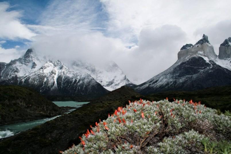 Chile-97