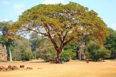 Kambodscha (11 von 50)