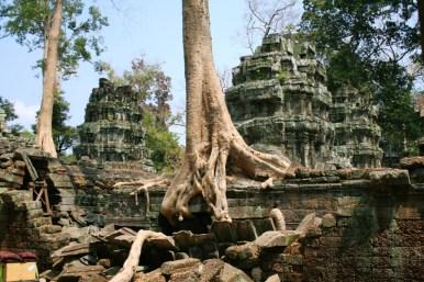 Kambodscha (30 von 50)