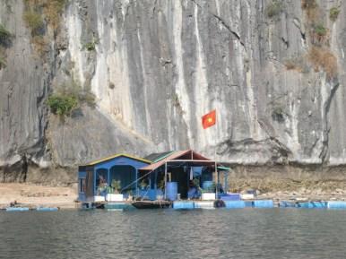 Vietnam-54