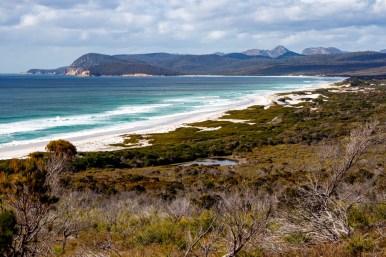The Friendliest Beaches of Tasmania