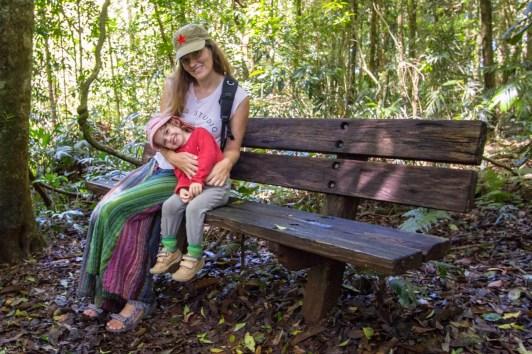 Break in the rainforest