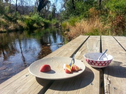 Breakfast at the creek