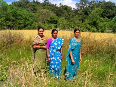 Drei Frauen im Feld