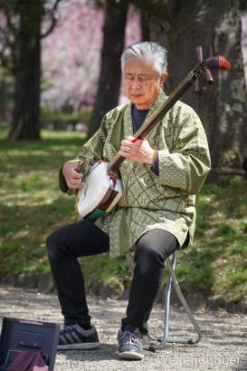 Japanese music instrument