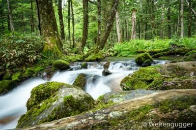 Waterfall Japanese Alps