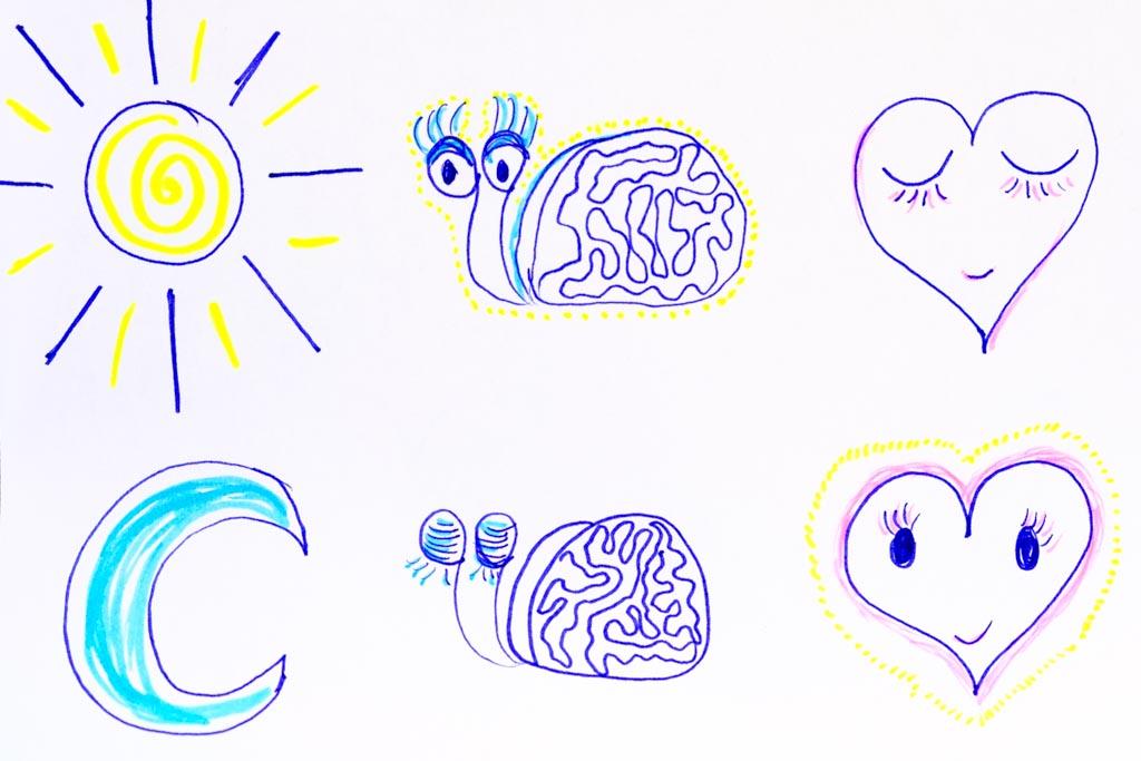 Hirn- und Herzaktivität im Licht