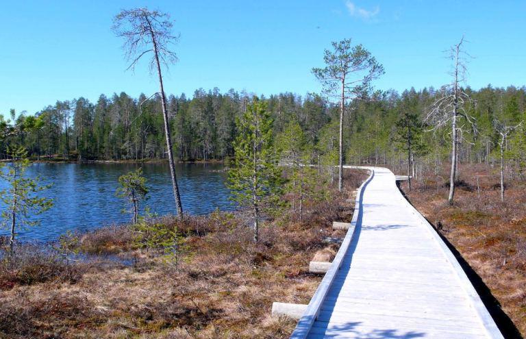 Wandern in Finnland