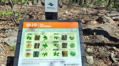 Hiking Seoraksan-Nationalpark, South Korea